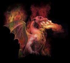 Dragon Jason Nugent