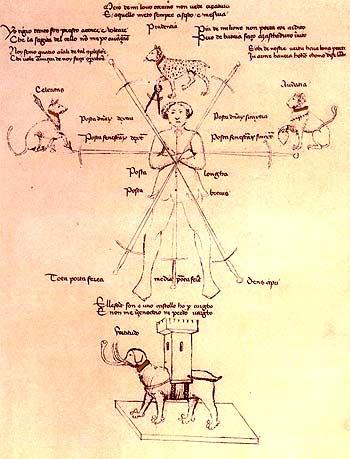 diagram-flos-duellatorum